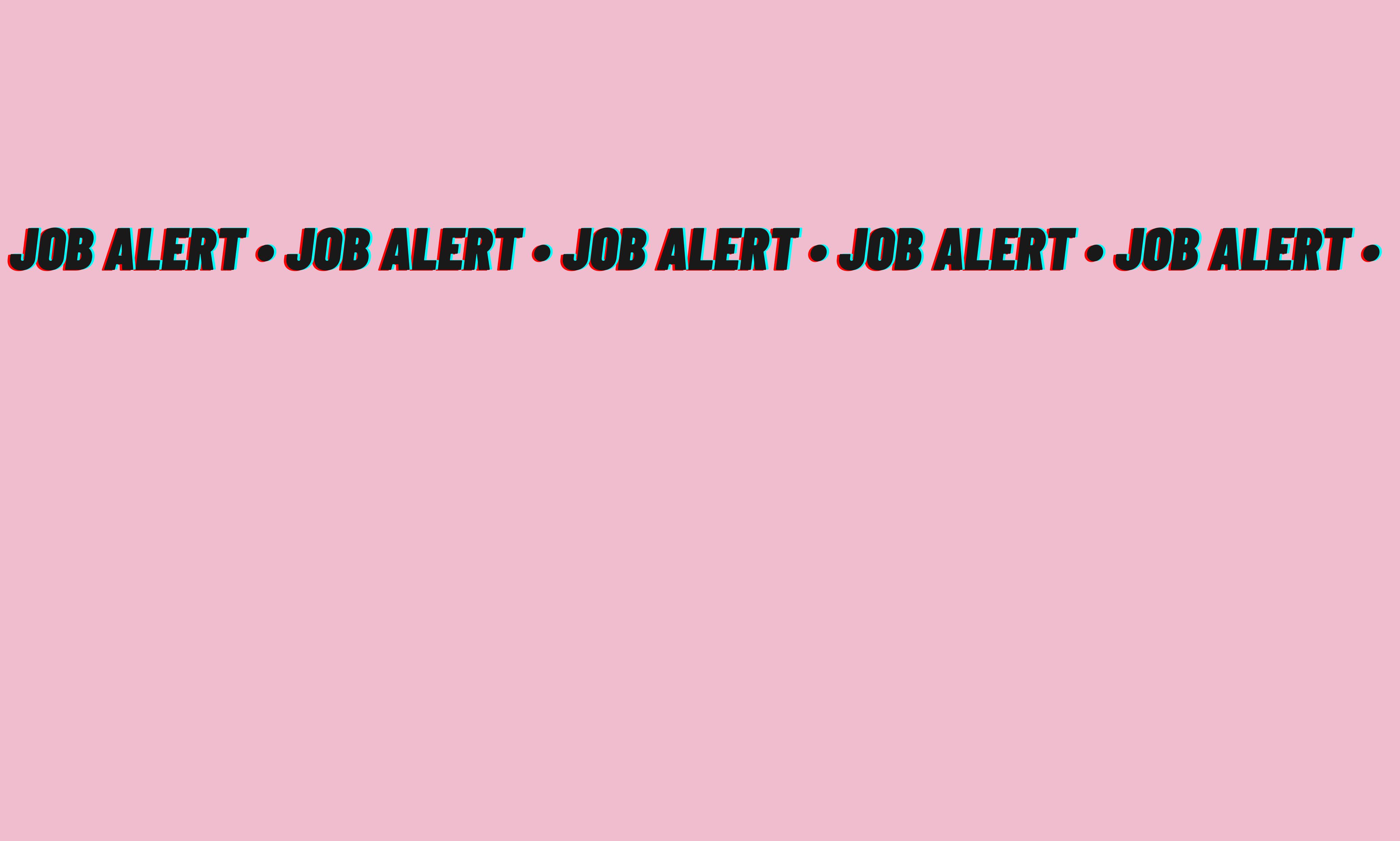 Job Alert: 1st Assistant Camera